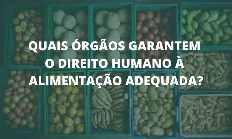 Leis, sistemas, equipamentos públicos, órgãos, políticas públicas e conselhos que trabalham para assegurar o direito humano à alimentação adequada