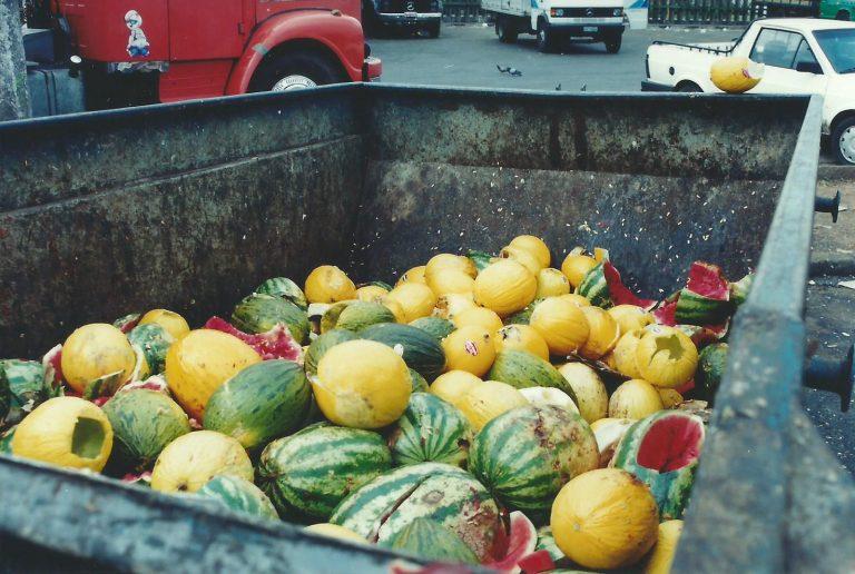 Combate ao desperdício de alimentos ajuda a reduzir o aquecimento global